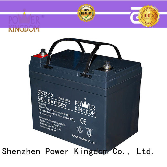 Power Kingdom fine workmanship gel battery factory price electric toys