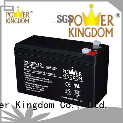 Power Kingdom high rate battery with good price UPS & EPS system