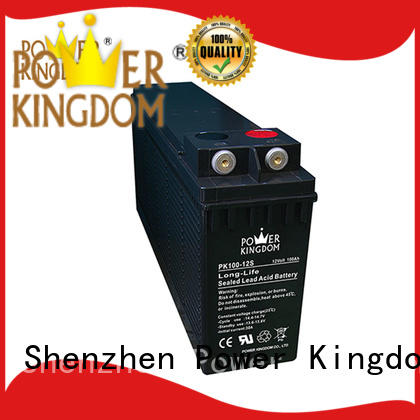 Power Kingdom front terminal battery factory price data center