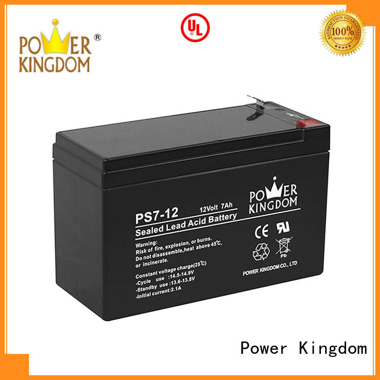 Power Kingdom sealed lead acid batteries on sale sightseeing cart