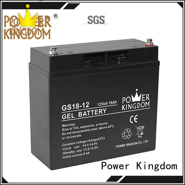 Power Kingdom good quality 12v gel battery electric toys
