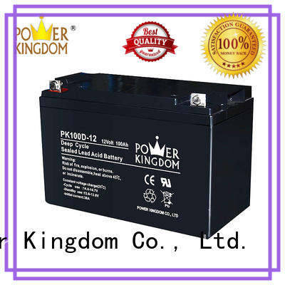 Power Kingdom 100ah deep cycle battery factory price deep discharge device