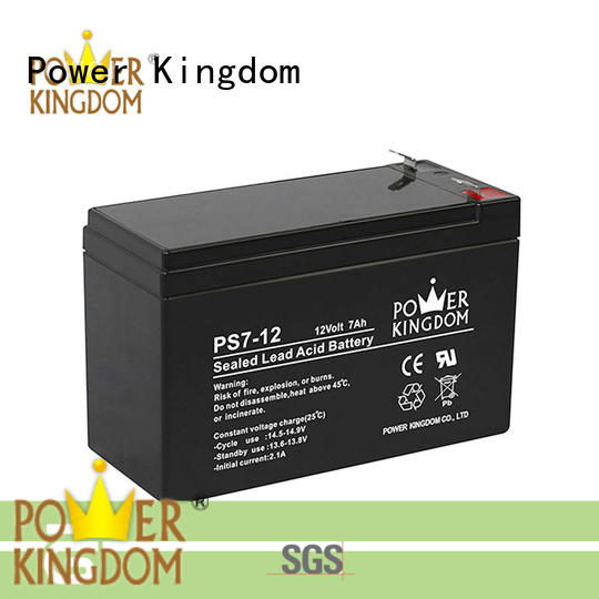 Power Kingdom fine manufacturing techniques sealed lead acid batteries promotion sightseeing cart