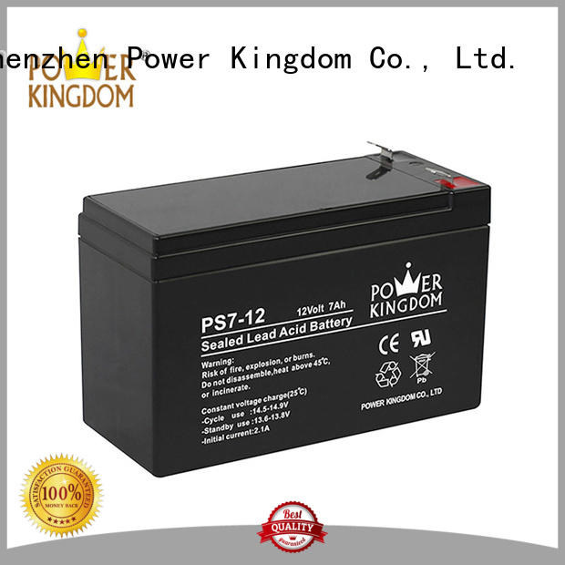 Power Kingdom advanced production technology ups battery china factory sightseeing cart