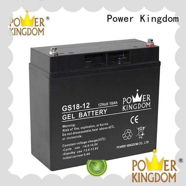 Power Kingdom agm vrla battery directly sale electric toys