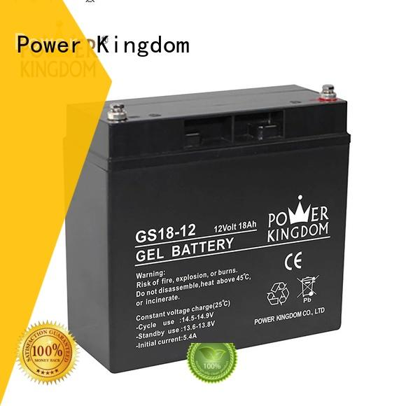Power Kingdom good quality 100ah agm battery factory price electric toys