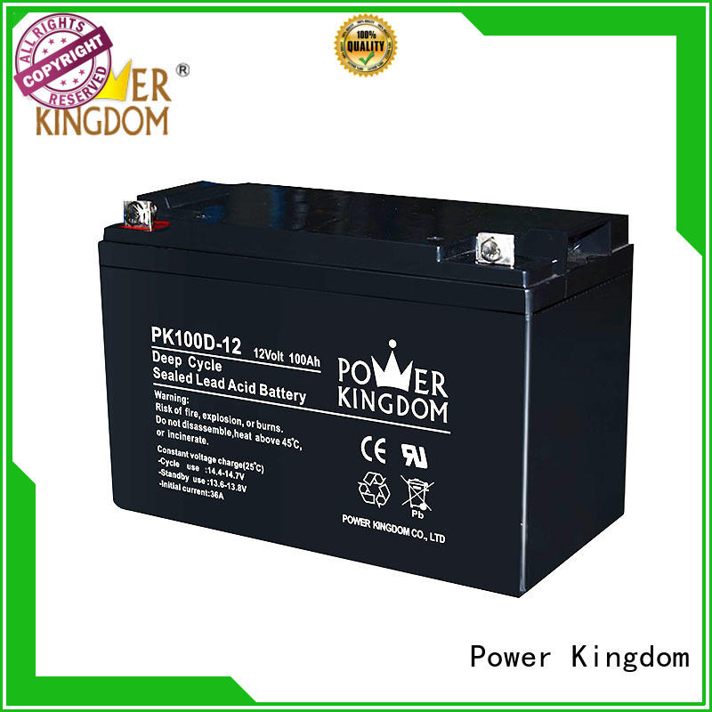 Power Kingdom 100ah deep cycle battery factory price