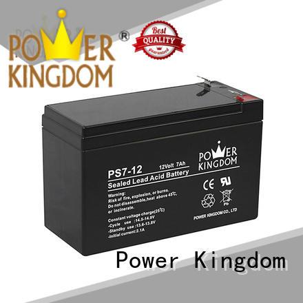 sealed lead acid batteries promotion sightseeing cart Power Kingdom