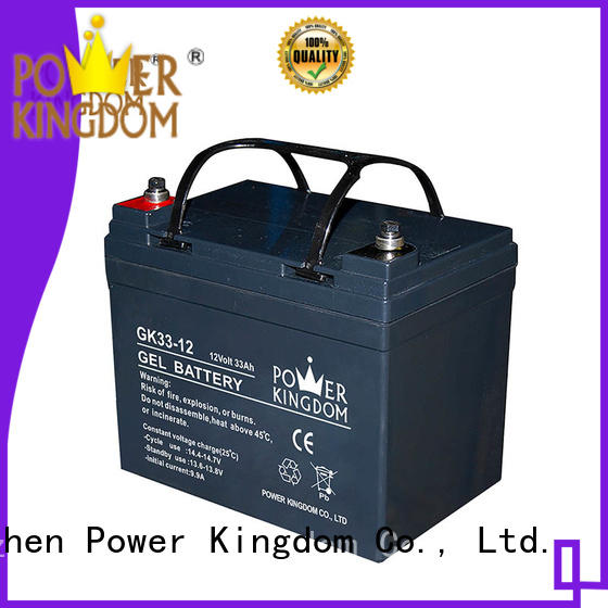 Power Kingdom vrla gel battery factory price electric toys