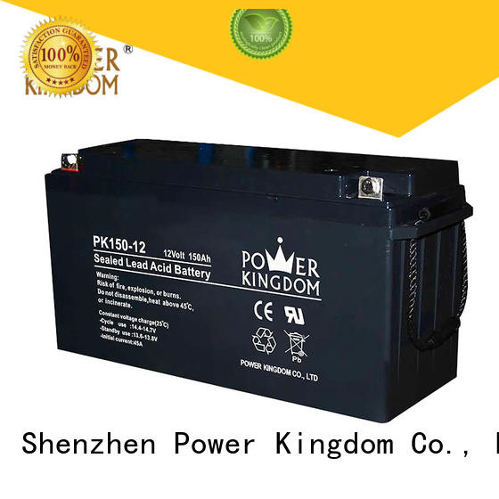 Power Kingdom long standby life rechargeable sealed lead acid battery design medical equipment