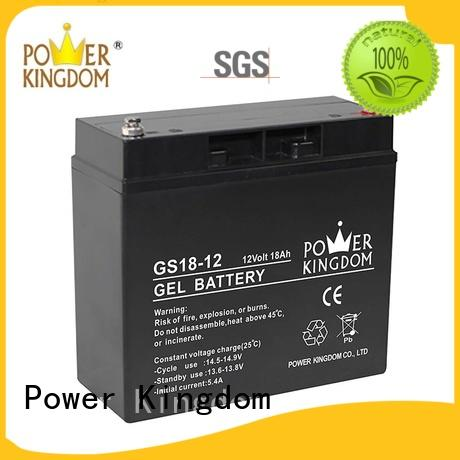 Power Kingdom good quality agm vrla battery factory price fire system