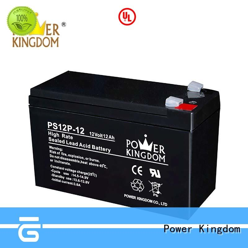 Power Kingdom high power discharge lead acid battery self discharge factory price Power tools