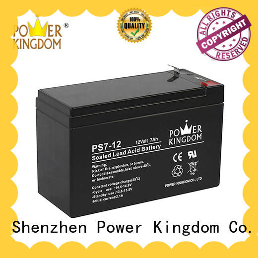 Power Kingdom fine manufacturing techniques ups battery replacement on sale electric forklift