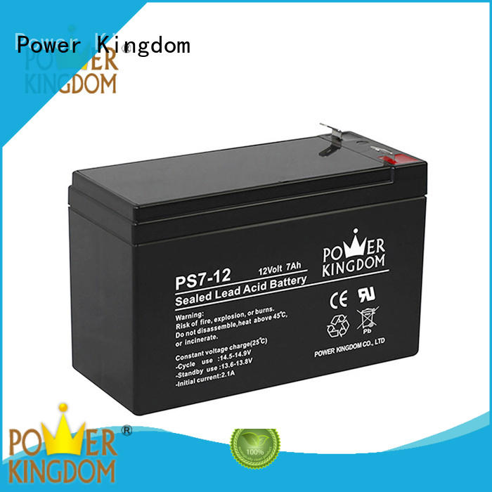 Power Kingdom computer ups battery promotion electric forklift