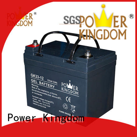 lead acid gel battery electric toys Power Kingdom