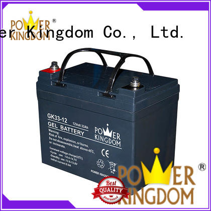 Power Kingdom fine workmanship sealed gel battery 12v electric toys