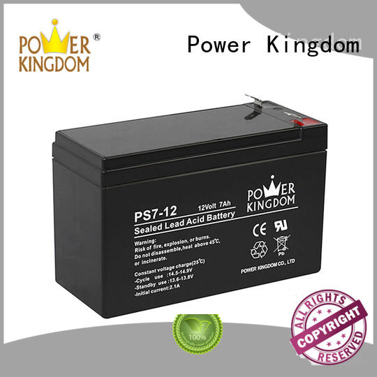 Power Kingdom ups battery replacement china factory electric forklift