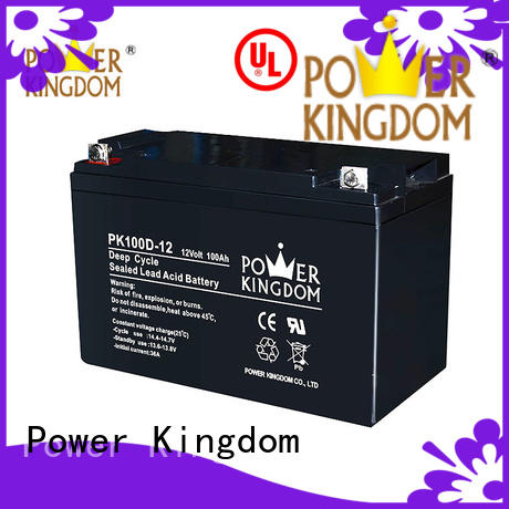 12v deep cycle battery personalized deep discharge device Power Kingdom