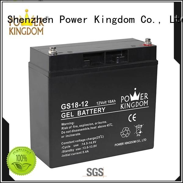 Power Kingdom comprehensive after-sales service 100ah agm battery factory price electric toys