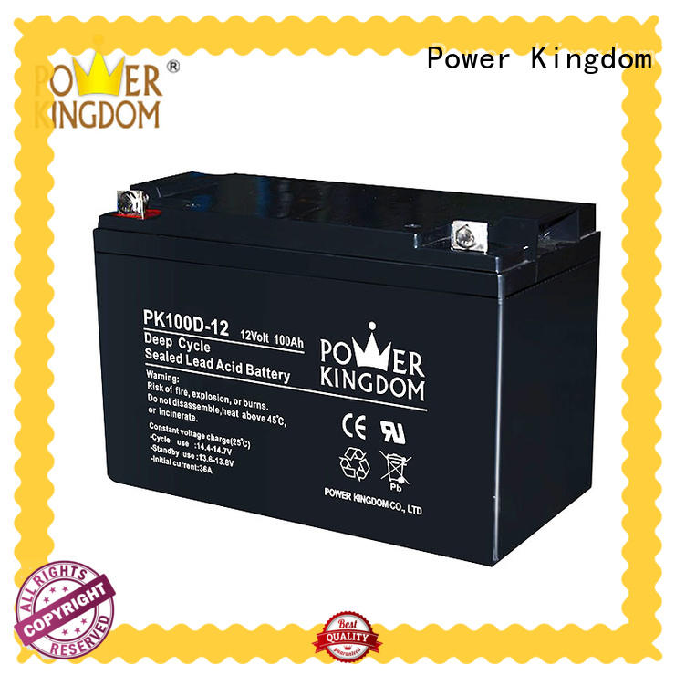 Power Kingdom deep cycle lead acid battery factory price deep discharge device