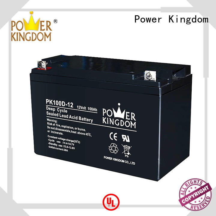Power Kingdom 100ah deep cycle battery factory price vehile and power storage system