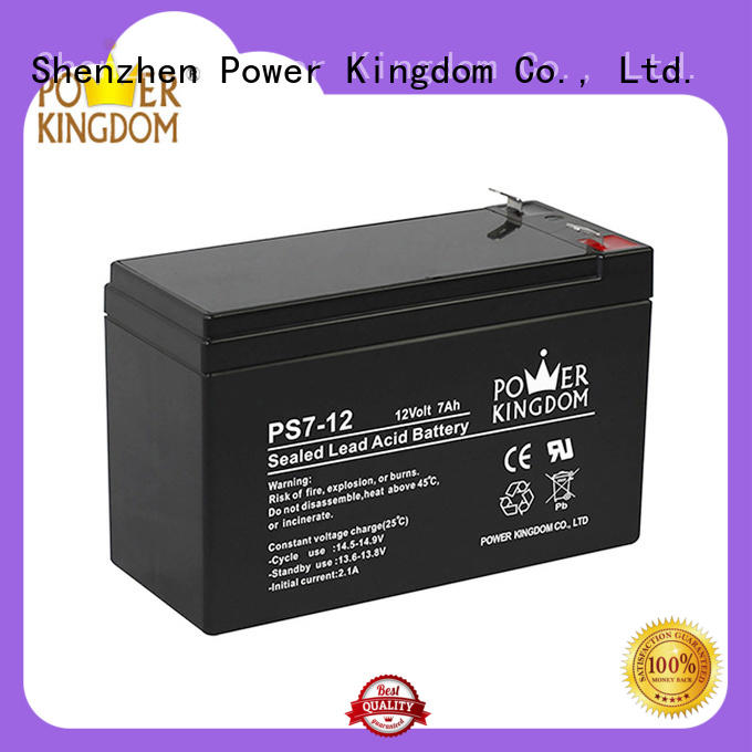 Power Kingdom ups vrla battery on sale sightseeing cart