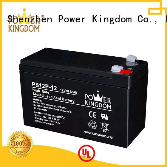 Power Kingdom lead acid battery discharge directly sale UPS & EPS system