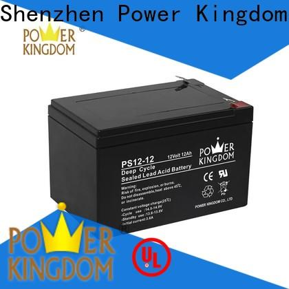 Power Kingdom no electrolyte leakage 6 volt deep cycle battery factory price