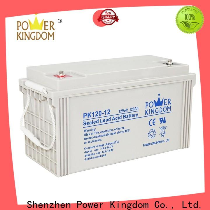 Power Kingdom agm deep cell battery customization