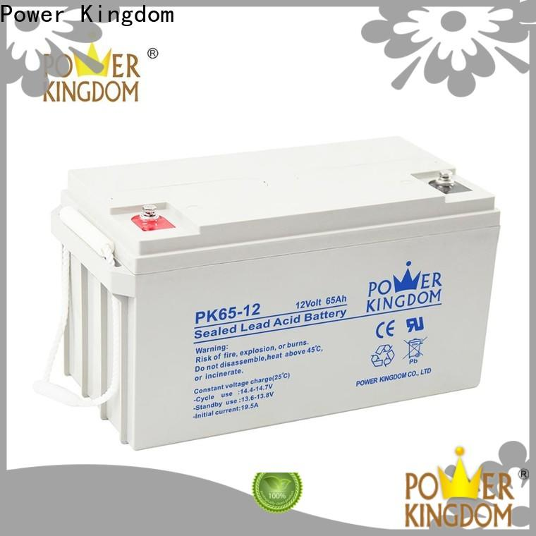 Power Kingdom agm battery technology factory Power tools