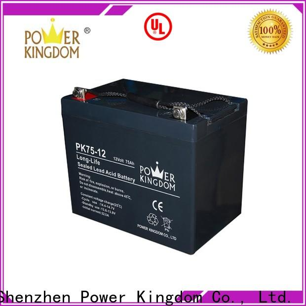 Power Kingdom best gel battery Supply Automatic door system