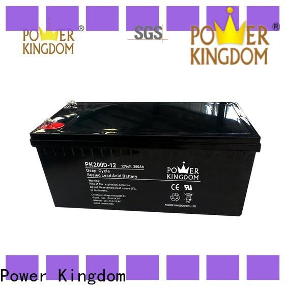 Power Kingdom Best 12v battery types with good price Power tools