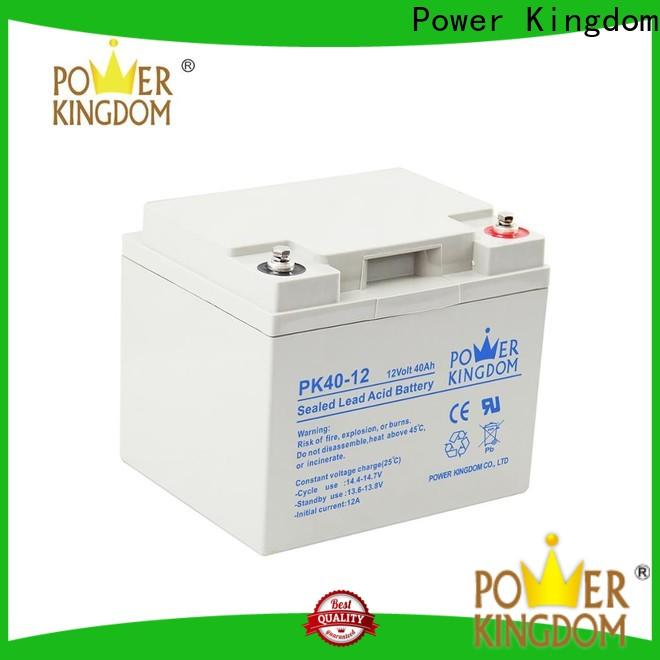 Power Kingdom group 49 agm battery from China Power tools