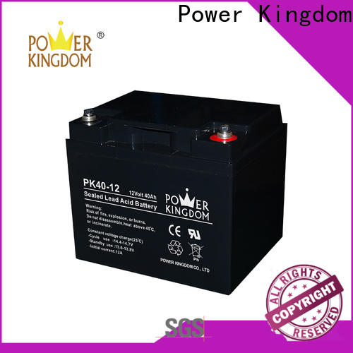 Power Kingdom no leakage design agm flat plate battery directly sale