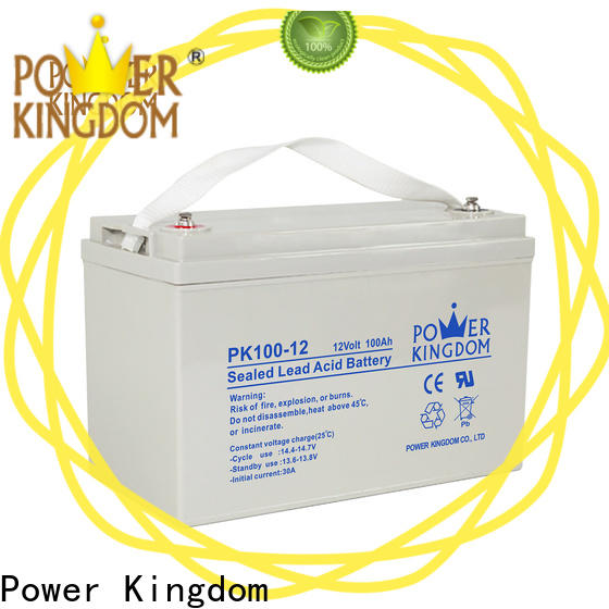 Power Kingdom lead acid gel battery from China