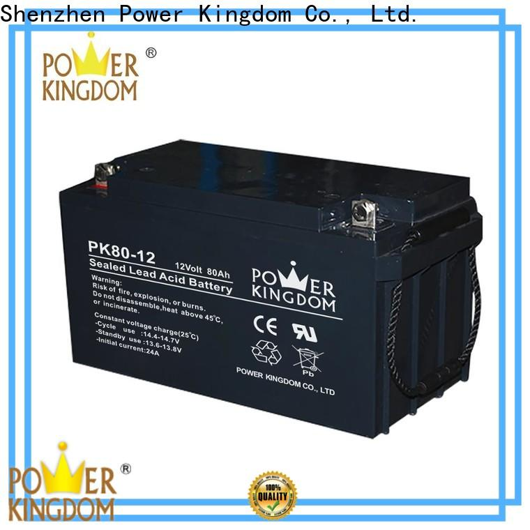 Power Kingdom gel valve regulated sealed battery factory price