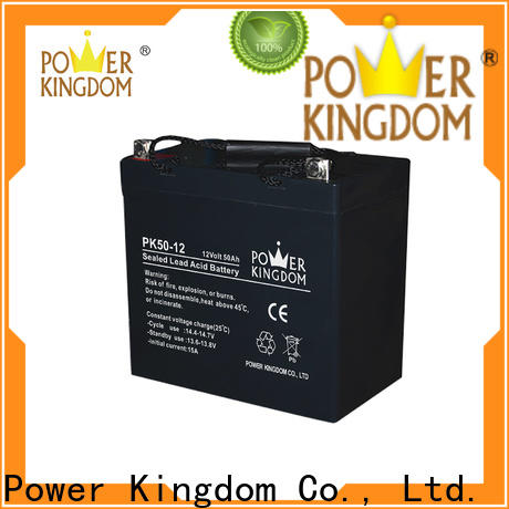 Power Kingdom lead acid battery charging order now Power tools