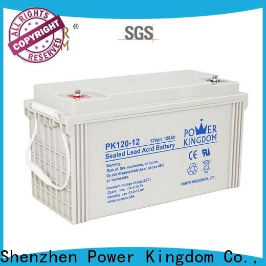 Power Kingdom dry battery 12v from China solar and wind power system
