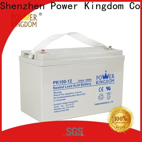 Power Kingdom Wholesale absorbed power agm batteries customization Power tools
