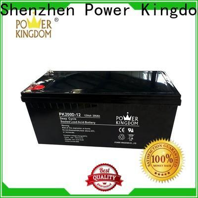 Power Kingdom valve regulated sealed lead acid customization Power tools
