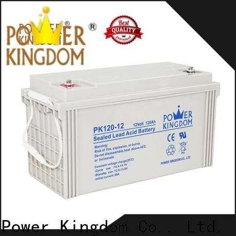 Power Kingdom Custom agm vrla batteries for business
