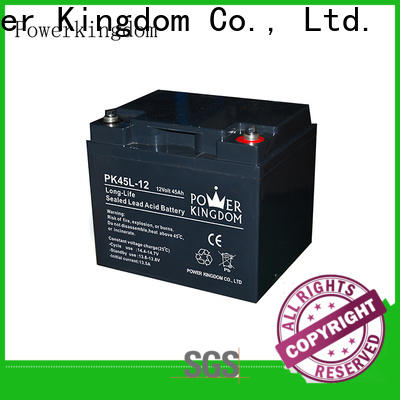 Power Kingdom High-quality agm batteries ltd factory price Automatic door system