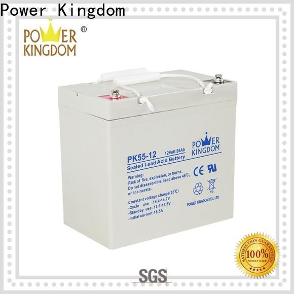 Power Kingdom glass mat battery prices directly sale Power tools