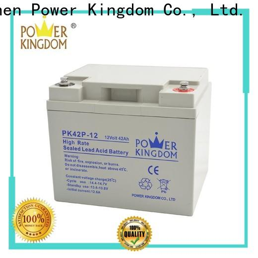 Power Kingdom High-quality true gel battery from China Power tools