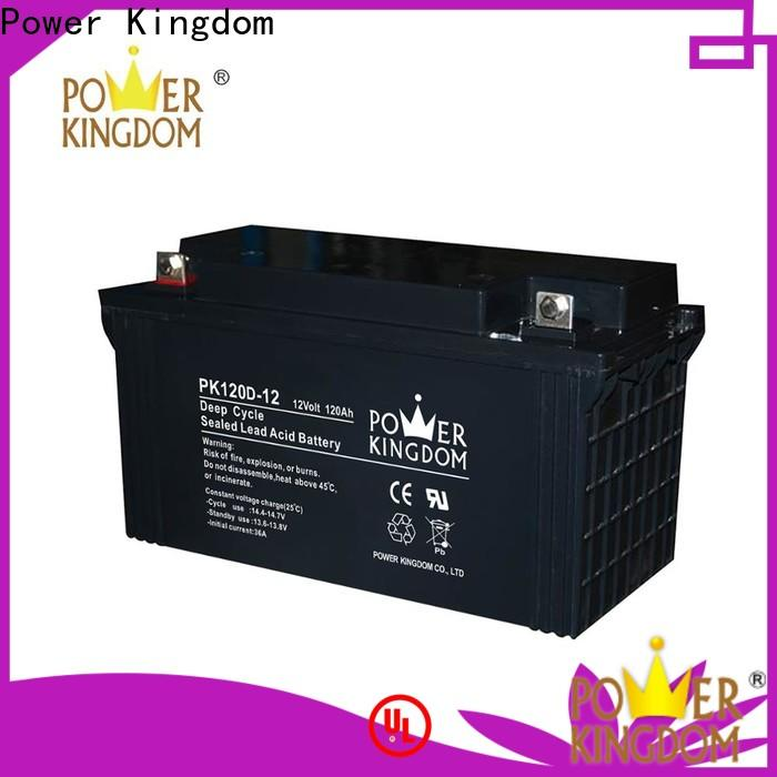 Power Kingdom Top 100ah agm battery factory price