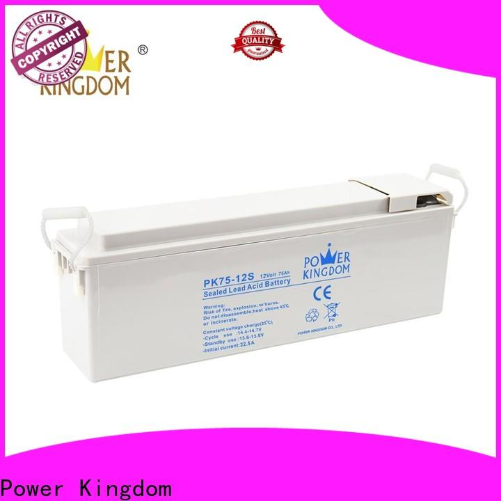 Power Kingdom gel car battery charger company Automatic door system
