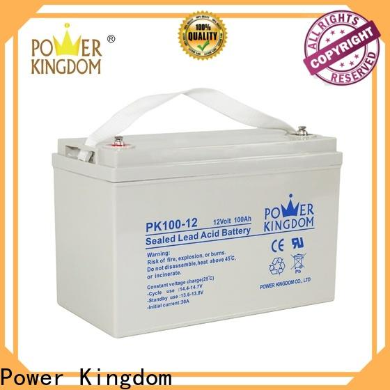 Power Kingdom lead acid battery construction factory price Automatic door system