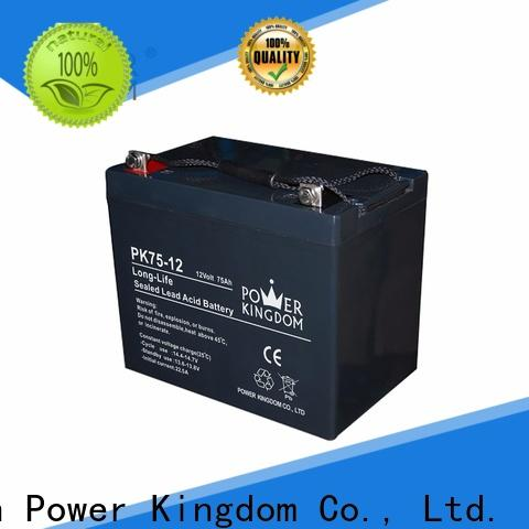 Custom 12v gel battery charger free quote Automatic door system