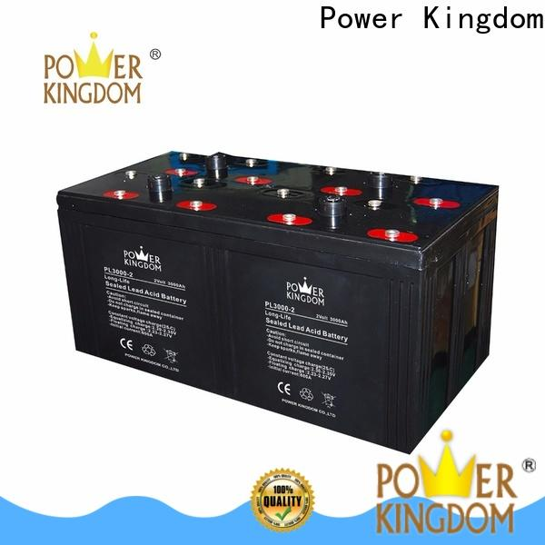 Power Kingdom Custom best gel car battery manufacturers Automatic door system