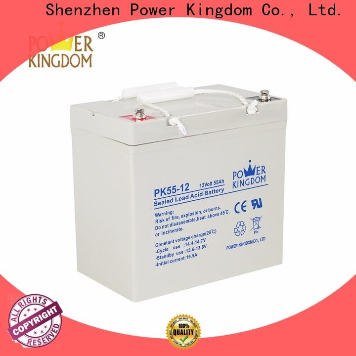 Power Kingdom Best optima agm battery from China Power tools